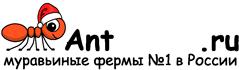 Муравьиные фермы AntFarms.ru - Хабаровск